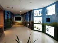 南安遊客中心臺灣黑熊生態展示區