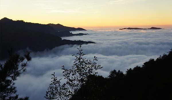 塔塔加雲瀑