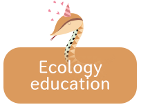 Ecology education